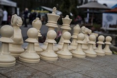 chess-pieces-1493222287bic.jpg